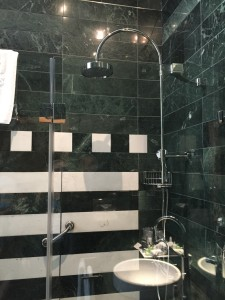 The beautiful shower with the head mounted on the wall (aka no need to hold it while showering)