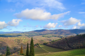 A view of Chianti from Gino's vineyard