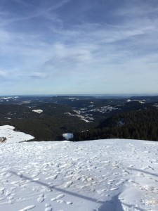 View of the valley from the top of Feldberg!