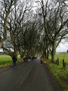 The Dark Hedges or the King's Road- you decide